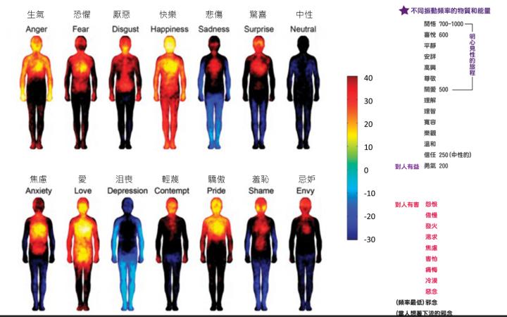 不同振動頻率的物質和能量-情緒的頻率