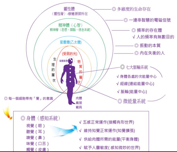身體能量中心-靈性體-精神體-以太體