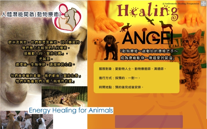 Animals-Healing-accupass
