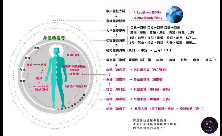 DNA療癒-提升細胞層面的光