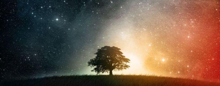 什么是天命:活出高频率